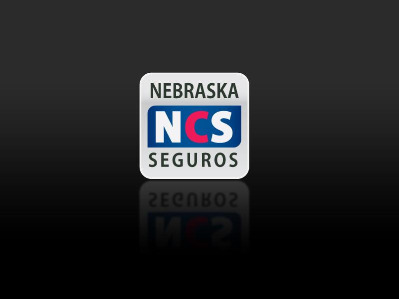 Logo Nebraska Seguros